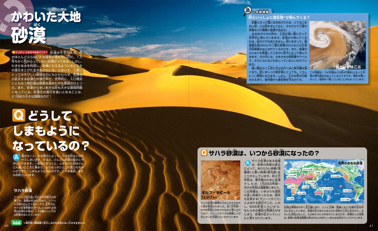 かわいた大地 砂漠