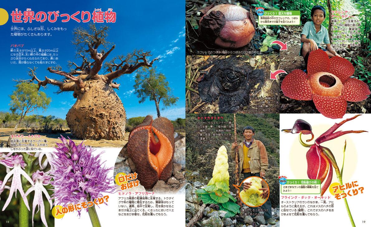 世界のびっくり植物