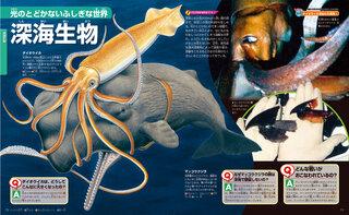 光のとどかないふしぎな世界 深海生物