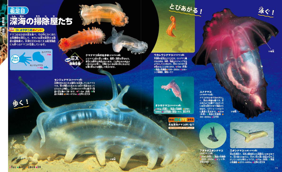 超深海底にはこんな世界が広がっている!