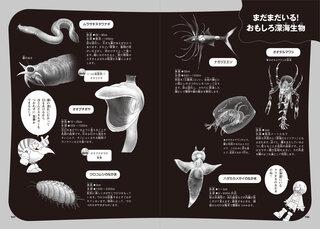 おもしろ深海生物コラム