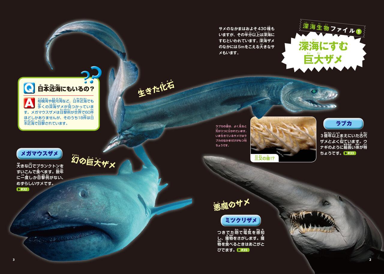 深海にすむ巨大ザメ