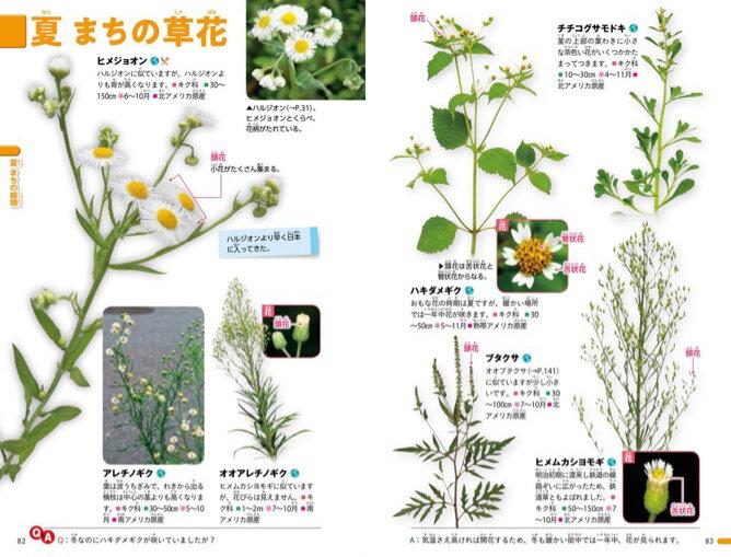 季節ごとの身近な草花ページも!