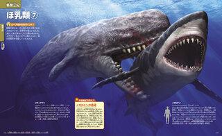 史上最大のサメ類・メガロドン