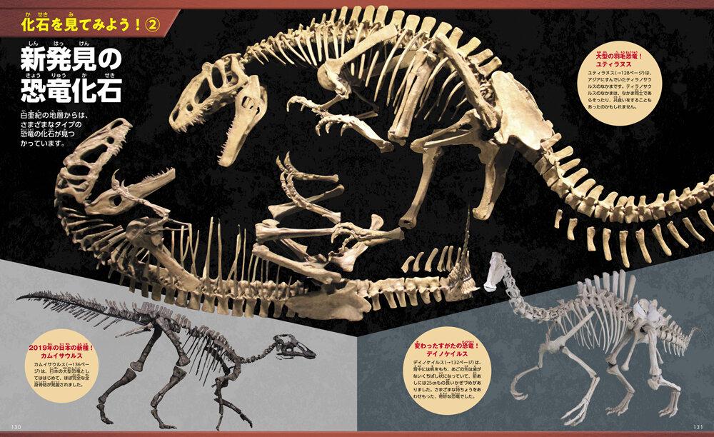 新発見の恐竜化石!