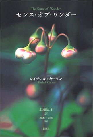 静かな詩の中から強いメッセージが伝わる「センス・オブ・ワンダー」。