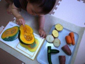 野菜の断面と絵本を比べる 本物の体験  1歳10ヵ月