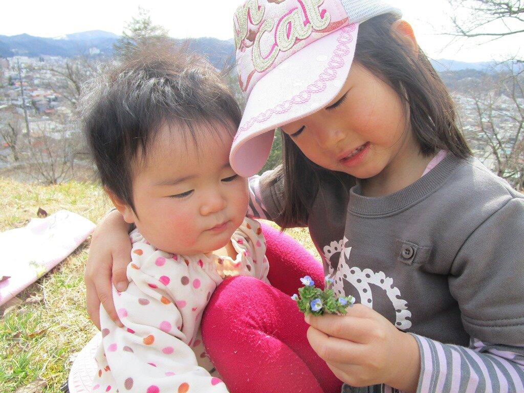 妹に優しく花を見せる姉 親子関係が反映される