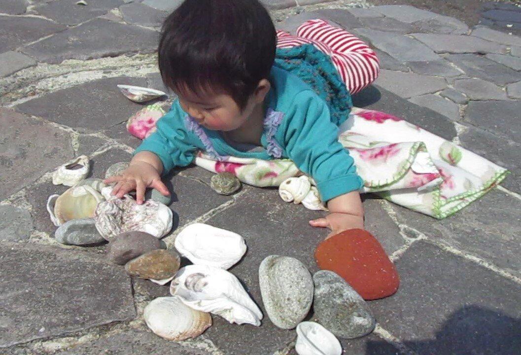 貝殻や石の感覚を楽しむ0歳8ヵ月児。赤ちゃんのときから豊富な自然体験を