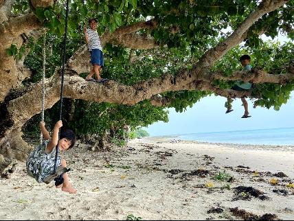"""子どもたちは「カイジ浜」にある大きな樹とブランコが大好き。<br> <small class=""""font-small"""">写真提供:片岡由衣</small>"""