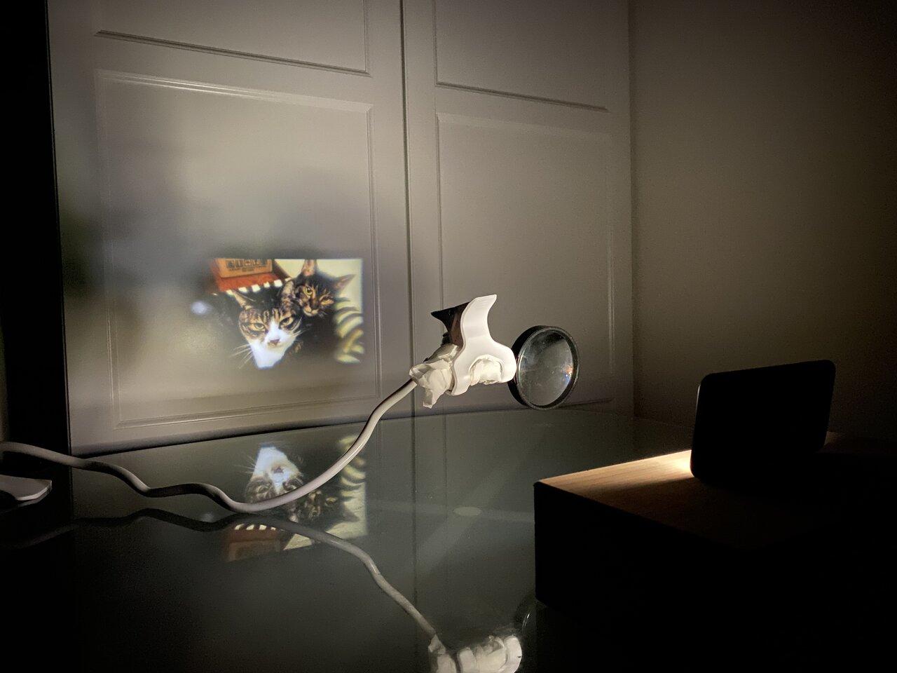 クリップアームなどで虫メガネを固定すれば、動画もゆっくり楽しめます。 撮影:Yuchi