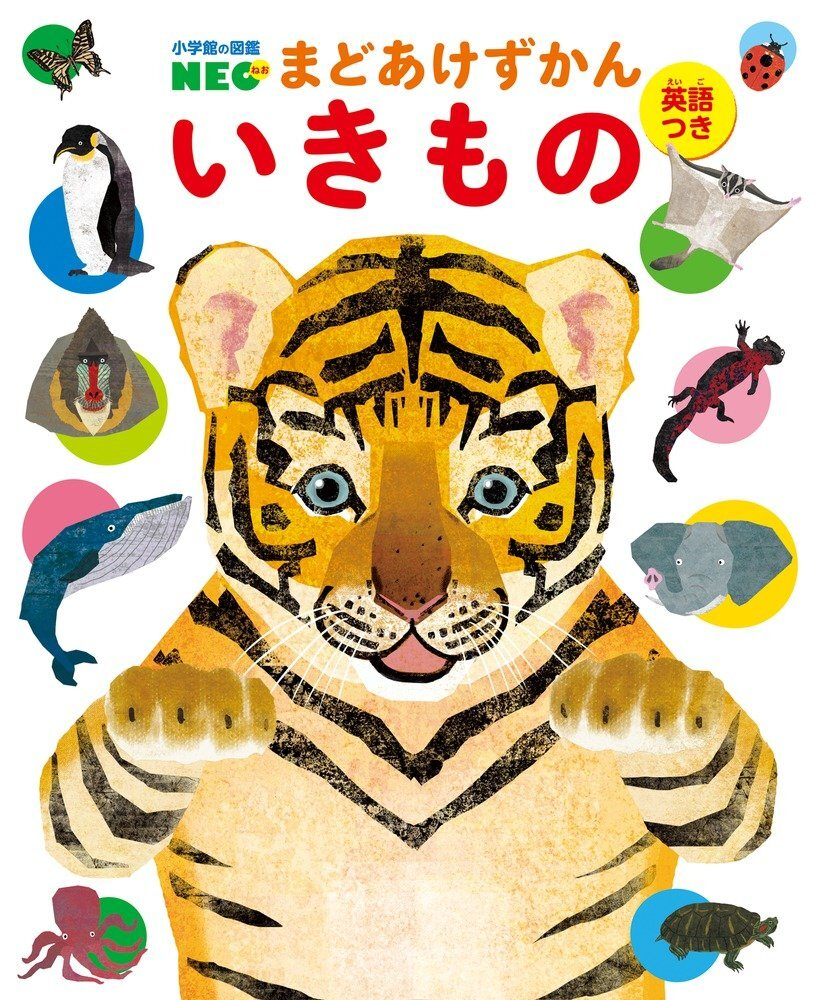 『小学館の図鑑NEO まどあけずかん いきもの』(作:北村直子/小学館)