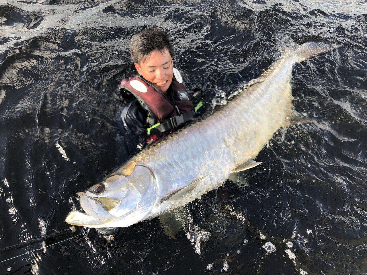 海にはターポンという巨大魚がうようよ。でも!イタヤラの迫力はもっとすごいぞ。<br>