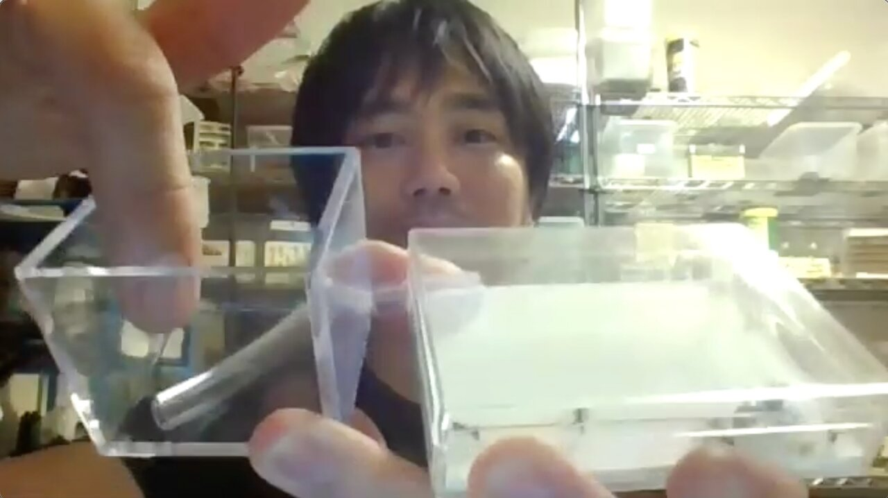 """両方の容器にプラスチック用のドリルで穴を開けて、チューブで連結したもの。プリンカップなどのやわらかい素材の容器を使うと、ハサミで簡単に穴を開けられます。  <small class=""""font-small"""">Zoom取材にて</small>"""