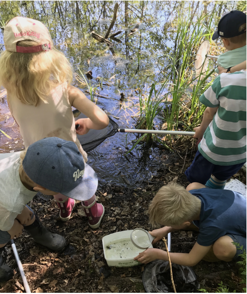 """自然の中で生き物たちを探すスウェーデンの子どもたち。<br> <small class=""""font-small"""">写真提供:高見幸子</small>"""