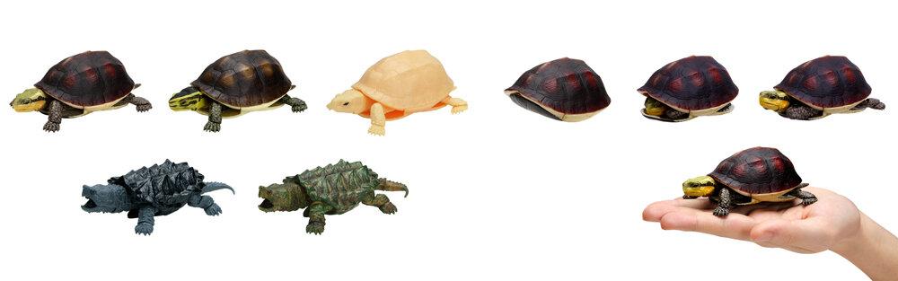 「かめ04」シリーズのハコガメ3種類、ワニガメ2種類の全5種類(各500円)。頭と手足がスッポリと隠れます。/バンダイ