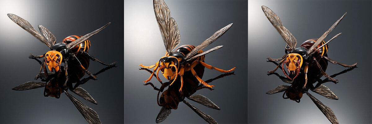 左からオオスズメバチ、キイロスズメバチ、クロスズメバチの全3種類。「いきもの大図鑑アドバンス スズメバチ」シリーズ各1000円/バンダイ