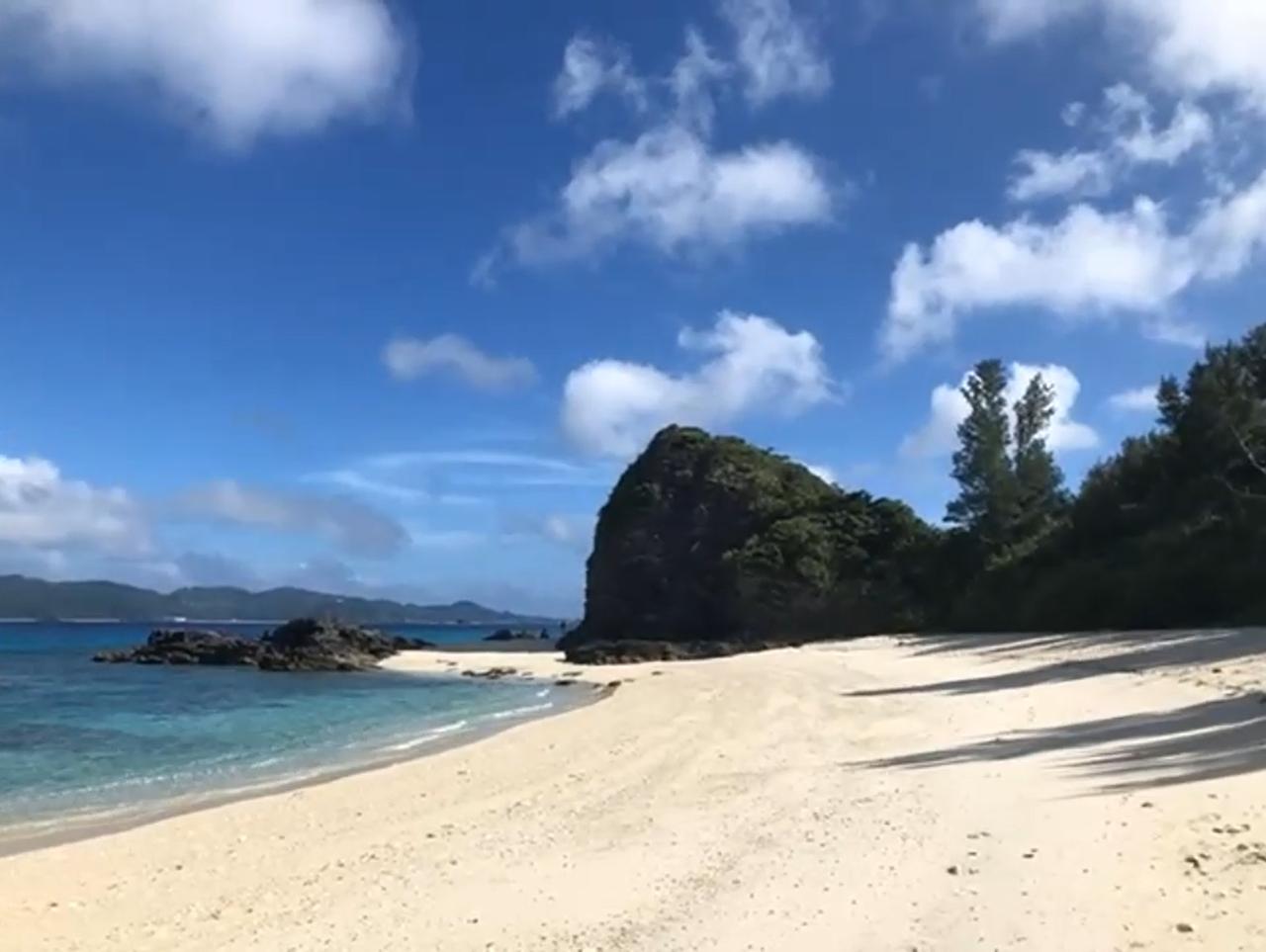 白い砂浜は、沖縄の海ならではの魅力。では、その理由とは?